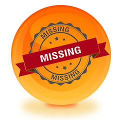 Missing Person Investigations And Services in Somerset